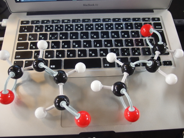 マレイン酸とフマル酸の分子模型