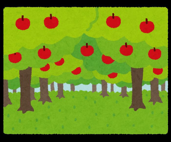 リンゴがたくさんなっている果樹園